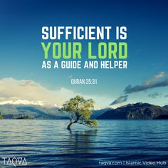 """"""" Sufficient is your Lord (Allah) as a Guide and Helper."""" Al-Qur'an 25:31"""