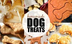 Dog owner? Check out this awesome list of Homemade Dog Treats! Perfect for the pup in your life!