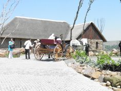 Horse and Carriage | Rain Farm Game Lodge | Luxury Private Game Reserve and Venue in KZN
