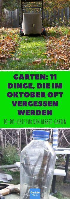 Blumenzwiebeln Garten Im Oktober Blumenerde Kaufen