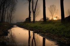 This is an amazing shot! Peacefulness by Pierfederico Garla on 500px