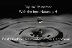 Sky Ha' Rainwater Purified drinking rainwater from the Caribbean Jungle