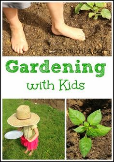 What is a sensory garden?  Explore the senses with kids in this outdoor garden that provides a calming and relaxing environment.  Explore sight, sound, taste, touch, smell, proprioception, and vestibular  senses with these sensory gardening ideas for kids.