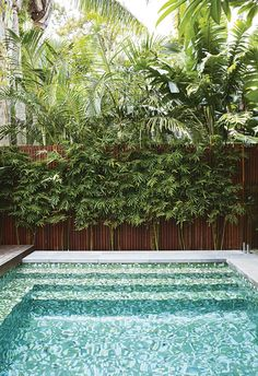 Inspired by a family trip to Bali, this compact garden includes kid-friendly zones and plenty of space for entertaining. Backyard Pool Landscaping, Small Backyard Pools, Small Pools, Tropical Landscaping, Outdoor Pool, Landscaping Ideas, Backyard Ideas, Pool Ideas, Pool Fence