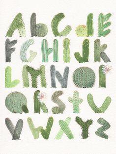 Cactabet on Behance Graffiti Lettering, Lettering Design, Plant Illustration, Watercolor Illustration, Cactus, Canson, Alphabet Book, Alphabet Fonts, Alphabet Letters