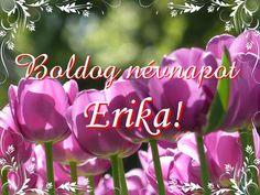 Name Day, Happy Day, Happy Birthday, Neon Signs, Plants, Google, Happy Brithday, Saint Name Day, Urari La Multi Ani