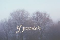 December... this is my favorite month. My world became amazing with the birth of my baby girl!