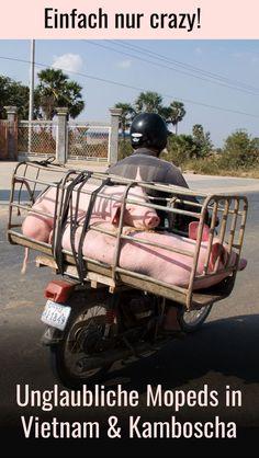 Verrückte, unglaubliche und lustige Mopeds in Vietnam und Kambodscha  stechen sofort ins Auge. Sie sind eines der Highlights während einer Südostasien-Reise. Einfach crazy! Klicken für mehr lustige Bilder im Reiseblog! #abenteuer Phnom Penh, Angkor Wat, Hanoi, Holiday In Cambodia, Some Pictures, Mopeds, Highlights, Fun, Travel