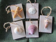 This set of five wood ornaments are each topped with a sugar starfish, sand dollar, welk shell, scallop shell and a clam shell. The wood has been painted white and distressed. These would look great on your Christmas tree or could even be used as a gift tag! Each ornament is 3-1/2 x