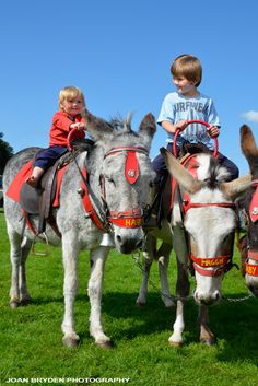 I love to ride donkeys in my spare time. These niño a are so blessed. Praise God who made donkeys!