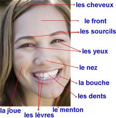 Le visage Visit the French Lessons Brisbane website here at http://www.frenchlessonsbrisbane.com.au/french-lessons-for-adults to learn more about Skype French lessons and other French language class opportunities as well http://www.frenchlessonsbrisbane.com.au/ #frenchlanguage