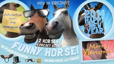 http://videohive.net/item/funny-horse-opener/6246924 Funny Horse Opener Pack is 4 project in one (Base, Merry Christmas, Happy New Year, Holiday) and you can choose between White or Brown horse.  Amazing Horse advertising with his Tongue and Awesome pre-rendered 3d animation ! :) It's good for: Merry Christmas wishes, Happy New Year greetings, Valentine's day cards, Holiday messages, Corporate holidays wishes, Love messages, Birthday greetings, Surprise cards, Presentations, Commercial…