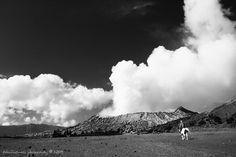 #Wisata ke #Bromo : Selalu Menarik untuk Kembali   #RangkaianKata http://rangkaiankata.com/wisata-ke-bromo-selalu-menarik-untuk-kembali.html