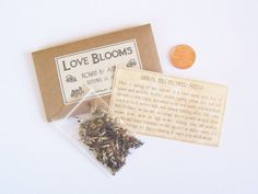 100 Steampunk Wedding Favors  Flower Seeds  by fairylandbazaar, $150.00