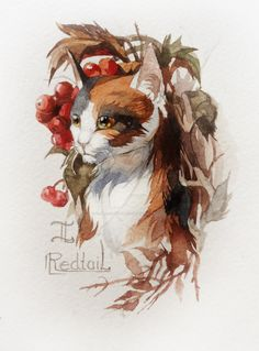 Redtail by Flame-of-inspiration.deviantart.com on @DeviantArt