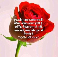 2019 Good Morning Images With Quotes In Hindi Shayari Photo Good Morning Babe Quotes, Beautiful Morning Quotes, Latest Good Morning Images, Hindi Good Morning Quotes, Good Morning Inspirational Quotes, Good Morning Picture, Good Morning Flowers, Good Morning Messages, Morning Pictures