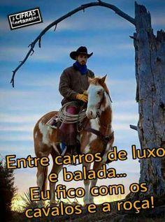 135 Melhores Imagens De Frases Sertanejas Frases
