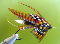 Full dress Atlantic salmon fly by Shawn Mitchell