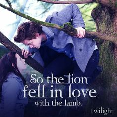 Edward the lion & Bella the lamb