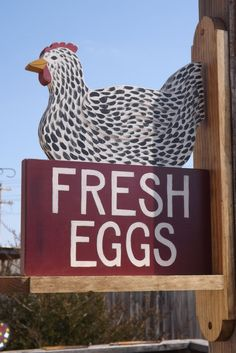Chicken Coop Sign Speckled Hen Fresh Eggs Painted on Both Sides with Bracket
