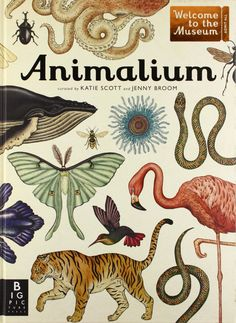 Animalium (Welcome to the Museum): Jenny Broom and Katie Scott #Books #Science #Nature
