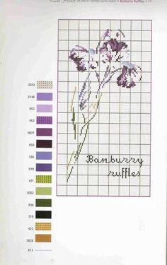 0 point de croix grille et couleurs de fils iris banburry ruffles de m-t st aubin