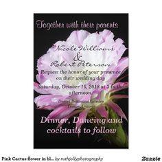 Pink Cactus flower in bloom Card