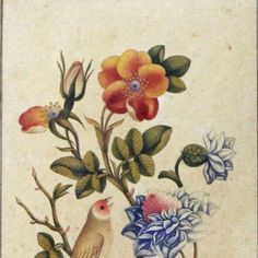 A Qajar Watercolour, Persia, early 19th century, comprising exotic flowers with a finch