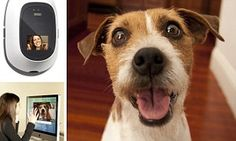 The videophone that lets owners talk to and treat their pets #DailyMail