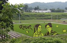Rice crop art is made by planting varieties of rice in careful patterns. Fictional warrior Naoe Kanetsugu and his wife Osen appear in fields in the town of Yonezawa , Japan.