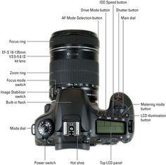 Canon EOS 60D for Dummies Cheat Sheet