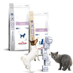This is a new food from Royal Canin. It helps with anxiety and stress which can cause health problems. Great new product! Only at Veterinarians.   Royal Canin- Calm