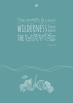 """""""The worlds finest wilderness lies beneath the waves"""" (Wyland) #waves #quotes #reef #fish #illustration #greatbarrierreef"""