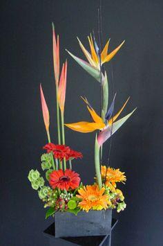Tropical bird of paradise and Tropic Fleur $65.00
