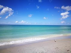 A day spent on the Gulf beach is never a chore!