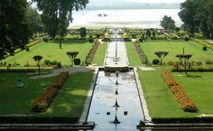 Nishat Bagh tour with Antilog Vacations at Srinagar Kashmir