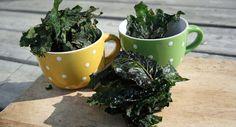 Recette de chou Kale, excellent au goût et pour la santé!!
