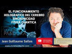 El Funcionamiento Holográfico del Cerebro, Sincronicidad y Física Cuántica por Jean Guillaume - YouTube
