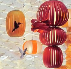 Lzf - humming birds on the booth