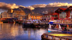 Cape Town, South Africa. Spring 2014!