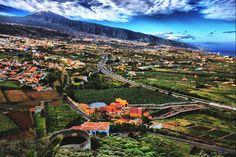 Mirador de Humboldt, Tenerife