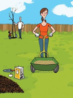 The best and worst times to plant a tree, reseed your lawn, etc. // #hgtvmagazine http://www.hgtv.com/design/decorating/clean-and-organize/the-best-and-worst-time-to-tackle-these-chores?soc=pinterest