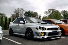 Badass bugeye with Morettes
