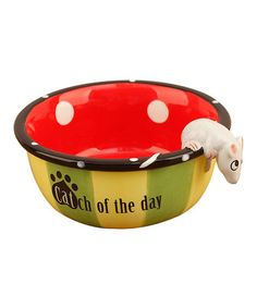 Delightfully decorated for a special feline friend, this bowl is the cat's meow. Cat Bowl, Pet News, Your Pet, Pet Supplies, Cool Stuff, Pets, Day, Creatures, Gift Ideas
