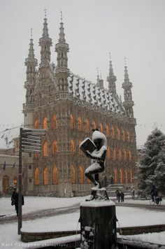 Leuven Town Hall in winter, Belgium Great Places, Beautiful Places, Le Luxembourg, Places To Travel, Places To Visit, Visit Belgium, European Travel, Architecture, Wonders Of The World