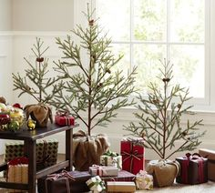 Faux Potted Pine Tree | Pottery Barn--cute idea and could use real ones--PB is rather expensive 30-100 bucks!