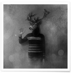 Animals in my room - Deer als Premium Poster von Evgeniy Stepanets   JUNIQE