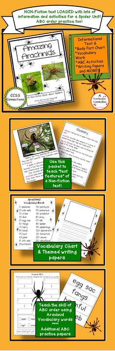 This non-fiction book uses photos to support the detailed information. Spiders are discussed in the book, are: American House Spider, Black Widow Spider, Brown Recluse Spider, Fishing Spider. A glossary is included for vocabulary work.  ABC order is a targeted skill using with pocket chart word cards & worksheets.   http://www.teacherspayteachers.com/Product/Spiders-Amazing-Arachnids-Shared-Reading-Non-fiction-Book-345235