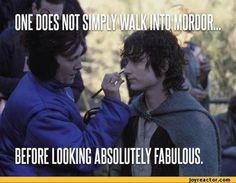 I  love Frodo. So cute.