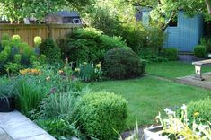 A large family garden design with lawn, seating and planting areas, Ealing, West London Family Garden, West London, Backyard Landscaping, Landscaping Ideas, Small Gardens, Dream Garden, Tulips, Lawn, Garden Design
